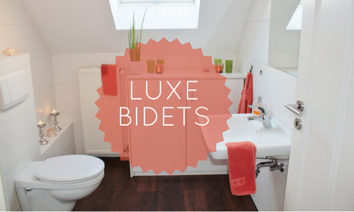 Outstanding Luxe Bidet Review The Ultimate Guide To Luxe Bidets Machost Co Dining Chair Design Ideas Machostcouk